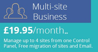 Multisite Business Header